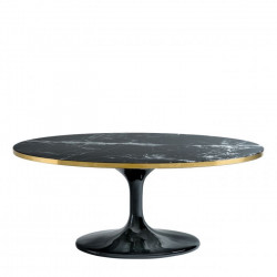 TABLE BASSE OVALE 120 x 60...
